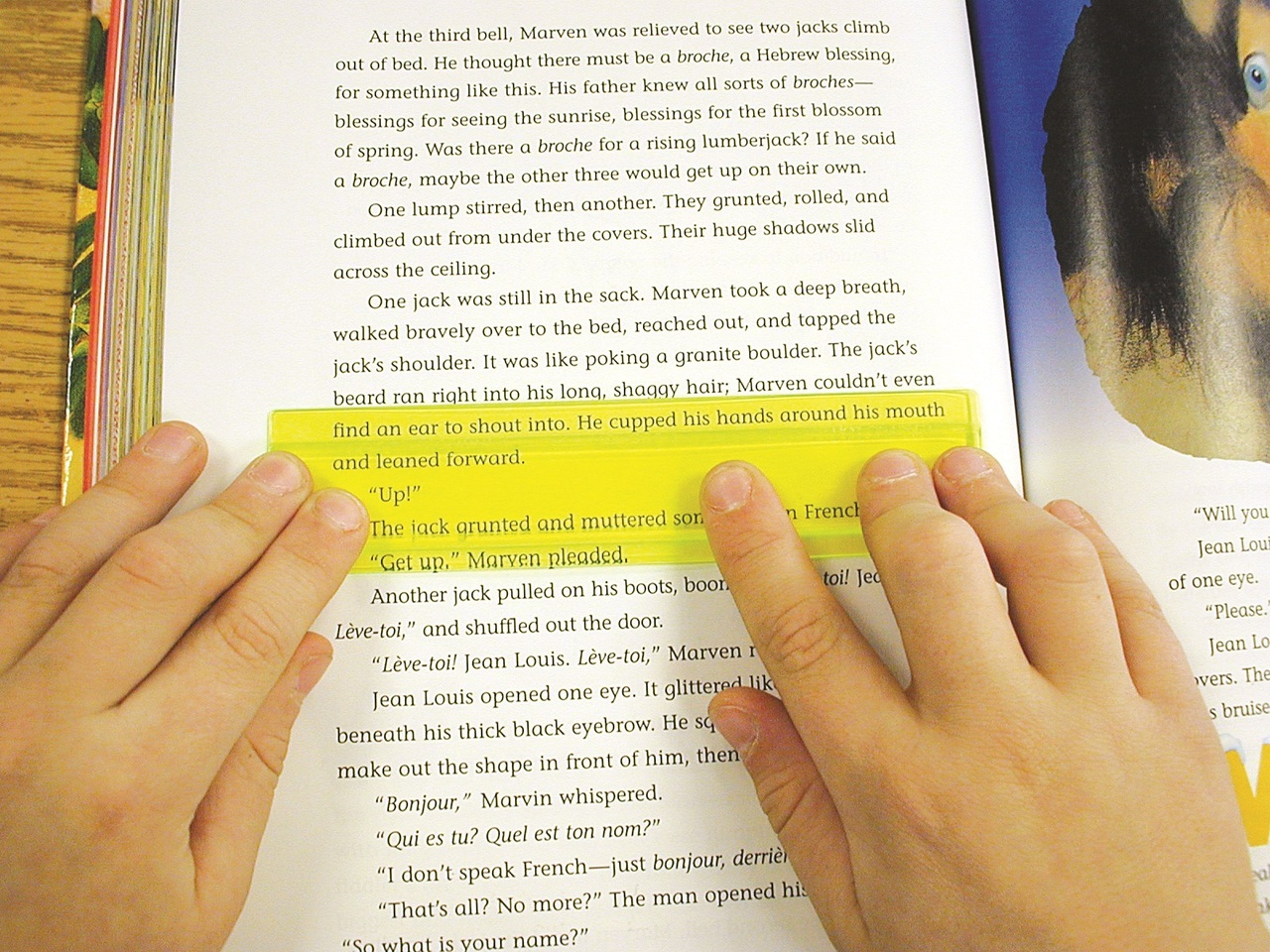 dyslexia yellow paper Dyslexia + coloured paper a candidate with dyslexia needs to use a coloured the use of a yellow coloured overlay is a reasonable adjustment for the.