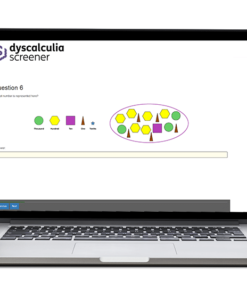 Screenshot from the Dyscalculia Screener